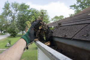 Cleaning Gutters Filled With Leaves & Sticks