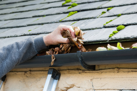 A Guide to Following a Good Roof Maintenance Plan