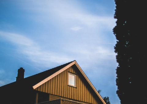 Top 8 Most Popular Types of Roofing Styles: Features and Benefits