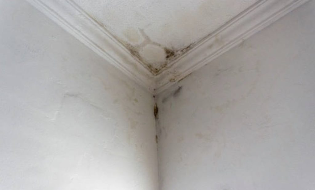 extent roofing damage