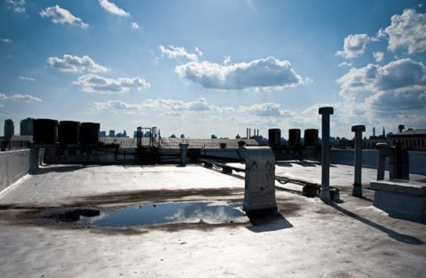 Roof Replacement vs Roof Restoration: Which Is the Right Choice?